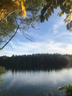 Thoreau+wrote+his+famous+book+Walden+at+this+pond.++Thousands+of+people+visit+the+pond+each+year.