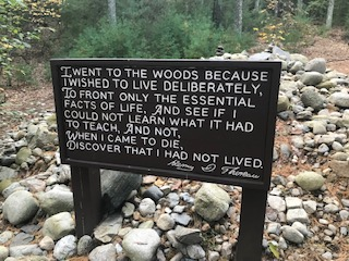 This+plaque+represents+where+Thoreau%27s+cabin+was.+Only+some+stones+remain.