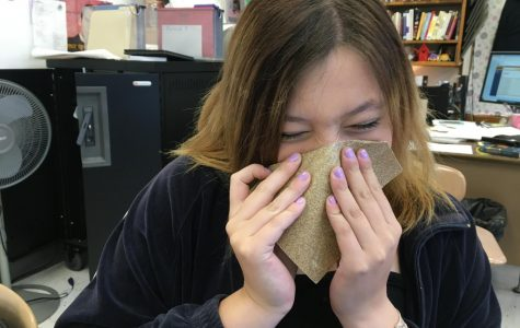 New and improved school tissues, now made out of sandpaper! SO much softer and gentle on the nose.