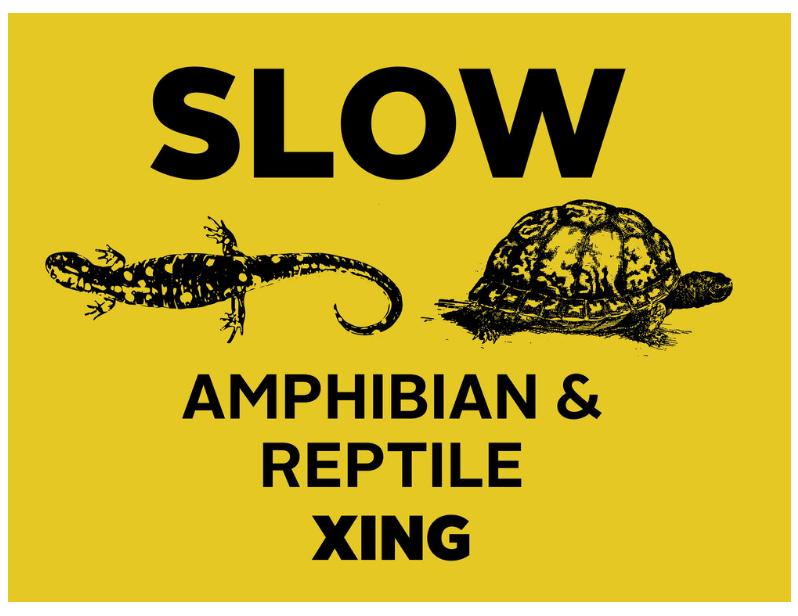 CAUTION: Amphibian Crossing!